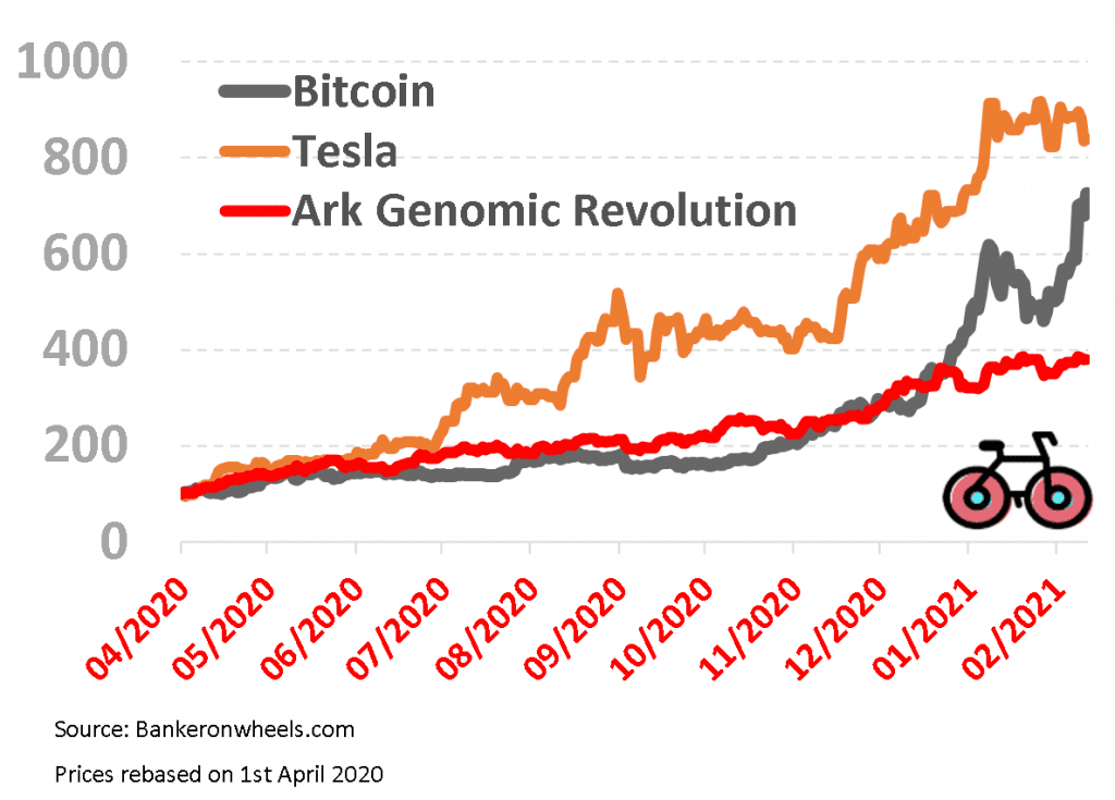 tesla arkg bitcoin bull market 2021
